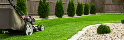 Picture of a lawnmower with bagger attachment mowing a lawn with a curved rock bed on either side with italian cypress trees and small bush plants