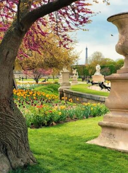 Picture of Flower garden with a large statue and tree in the foreground, surounded with grass.